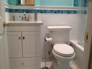 Toilet New